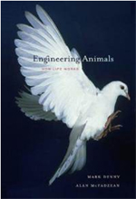 Engineering animals : how life works