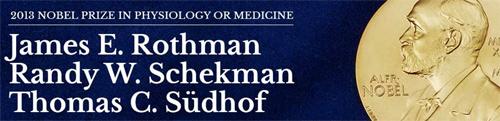Nobel prize 2013 medicine pdf